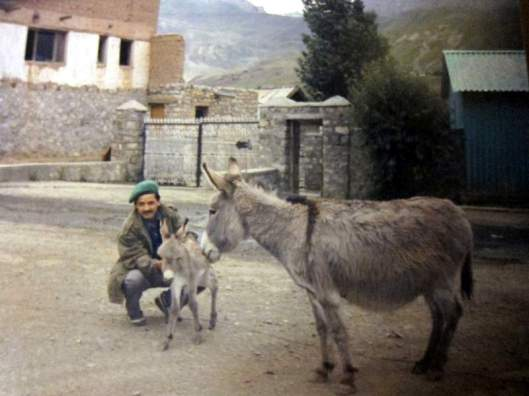 Among some of the friendliest creatures on the Kargil frontier